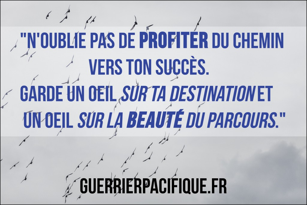 instagramquote78_guerrier_pacifique