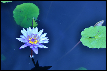 améliorer sa pratique de la méditation